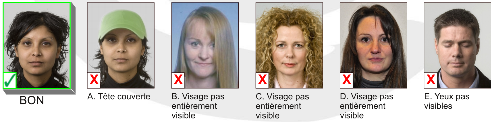 Belgium passport photo